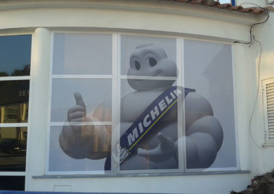 Michelin manuel dos pneus